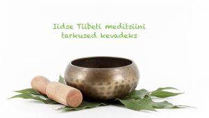 tiibeti meditsiini tarkus